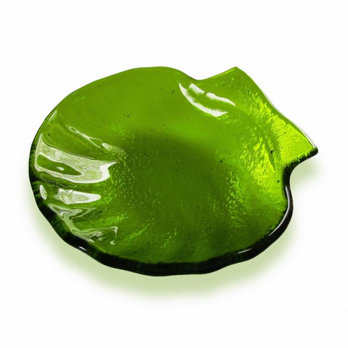 Conchiglia verde chiaro